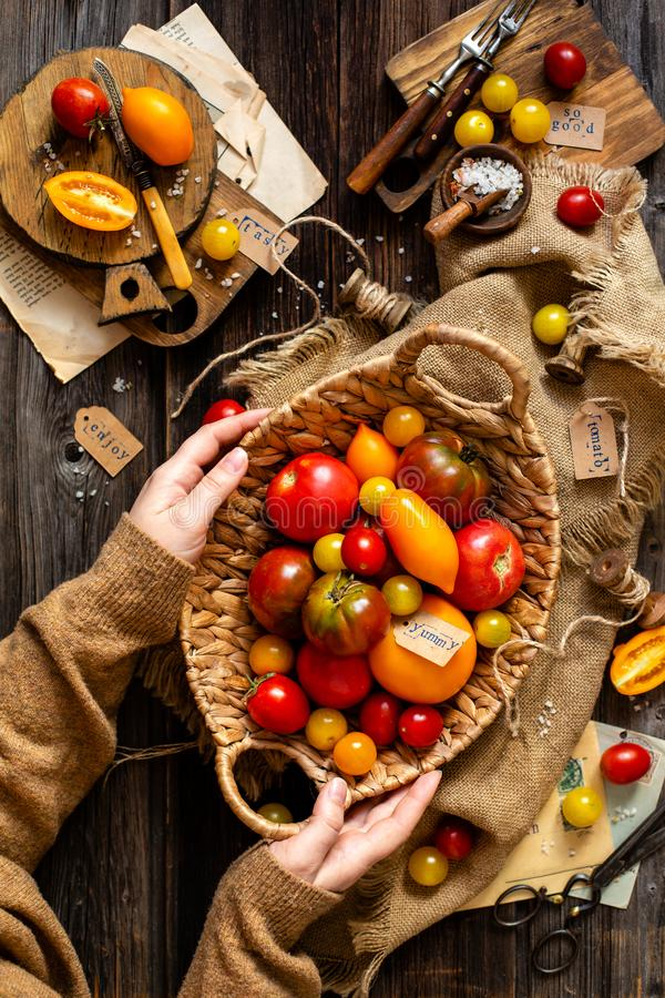 Overhead shot of homegrown assorted red, yellow, orange tomatoes in wicker straw basket in woman hands. On sackcloth on rustic wooden table, autumn harvesting stock photos
