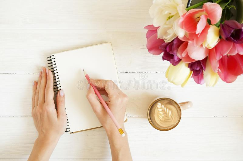 Overhead shot of woman hands drawing, writing with pencil in open notebook, drinking coffee on white wooden table. Beautiful tulip royalty free stock image