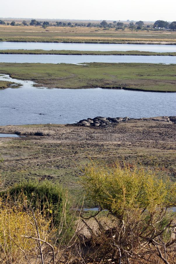 Overhead view of the Chobe River stock image