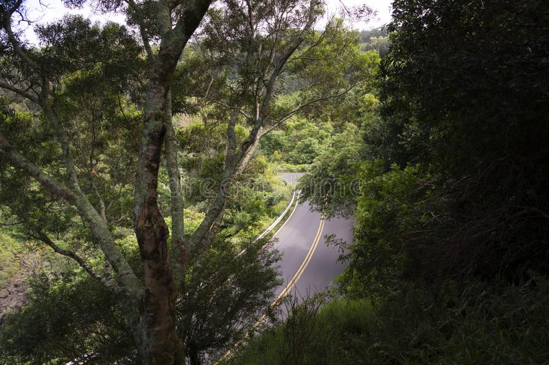 Overhead view of road to Hana from the island of Maui Hawaii royalty free stock images