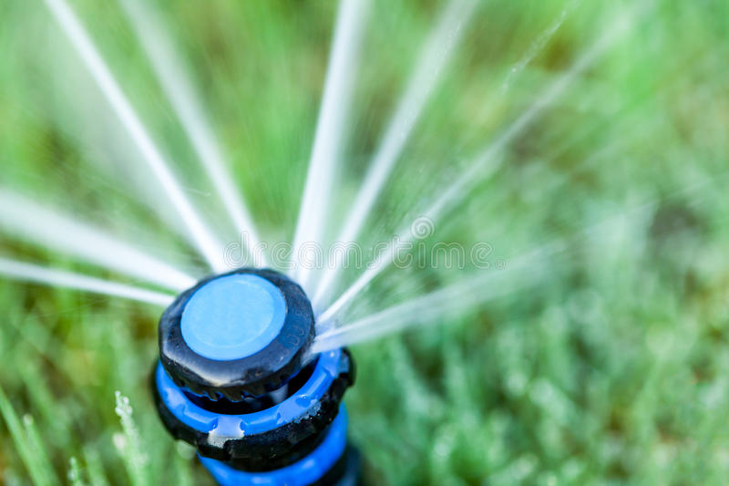 Overhead view of yard sprinkler with blurred background stock image