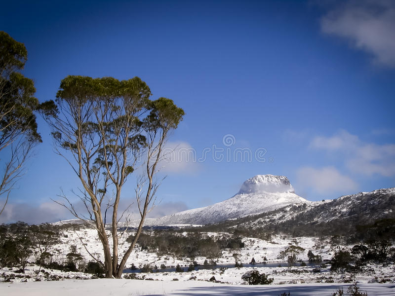 Download Overland Track stock photo. Image of scenic, beauty, forest - 15701370