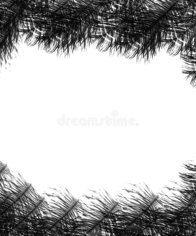 Download Overlay Frame Feather stock illustration. Illustration of generated - 7331410