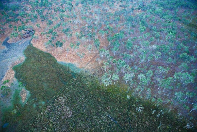 Overlook wilderness in dawn