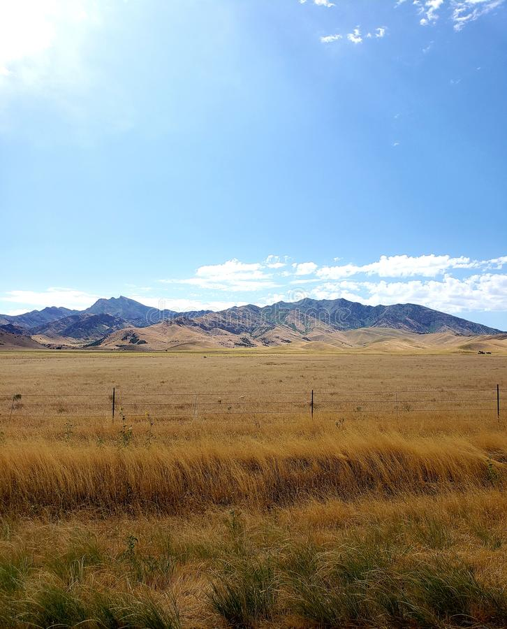 Overlooking a dry rural grass landscape with a fenceline stock photography
