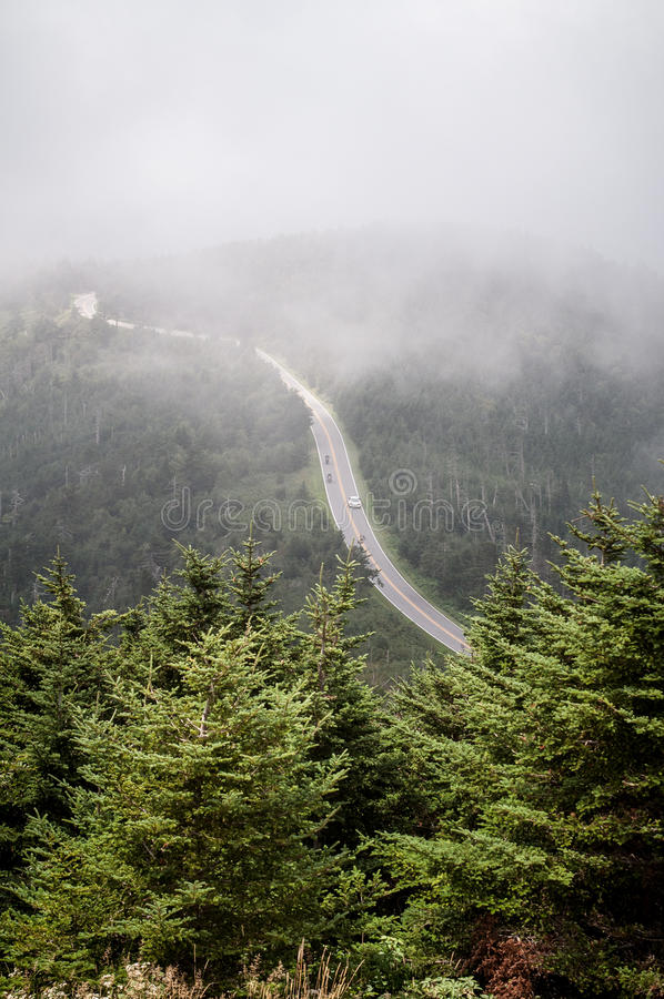 Overlooking Foggy Valley And Balsam Pine Trees At Stock ...