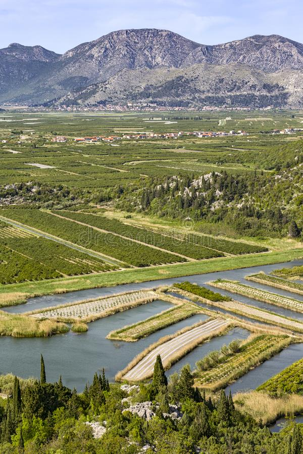 Overlooking the Neretva River Delta in Croatia. Near the Adriatic coast and Bosnia. The Neretva is a river that flows through both countries. The delta is very royalty free stock image
