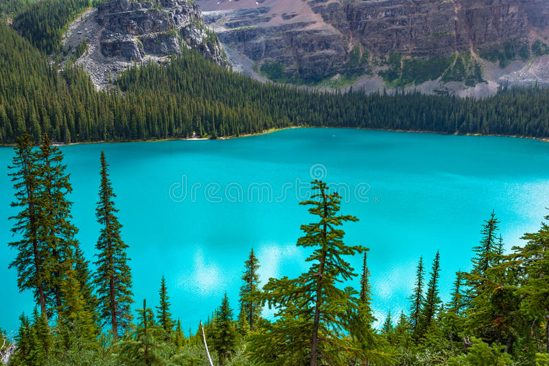 Overlooking Scenic Lake O'hara in Yoho National Park royalty free stock image