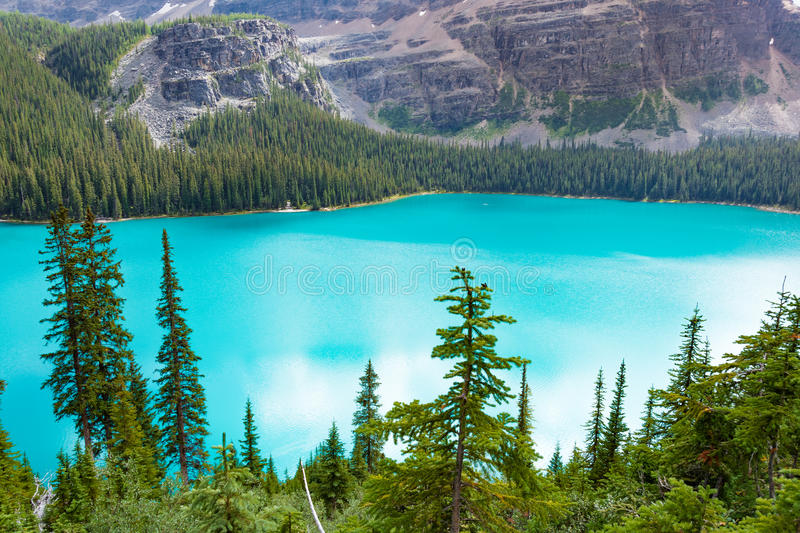 Overlooking Scenic Lake O'hara in Yoho National Park royalty free stock photo