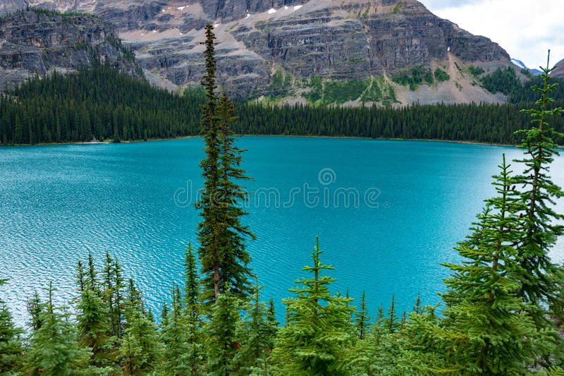 Overlooking Scenic Lake O'hara in Yoho National Park royalty free stock photography