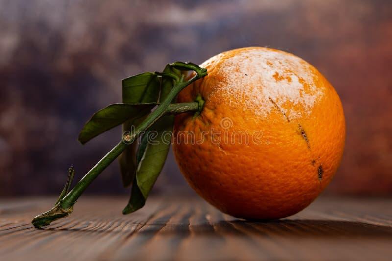 Overripe orange on a wood table royalty free stock photo