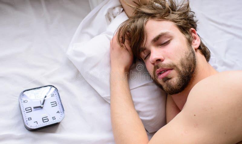 Oversleep проблема Сторона человека небритая сонная кладет взгляд сверху будильника подушки Сон Гая пропустил звенеть будильника стоковые фотографии rf