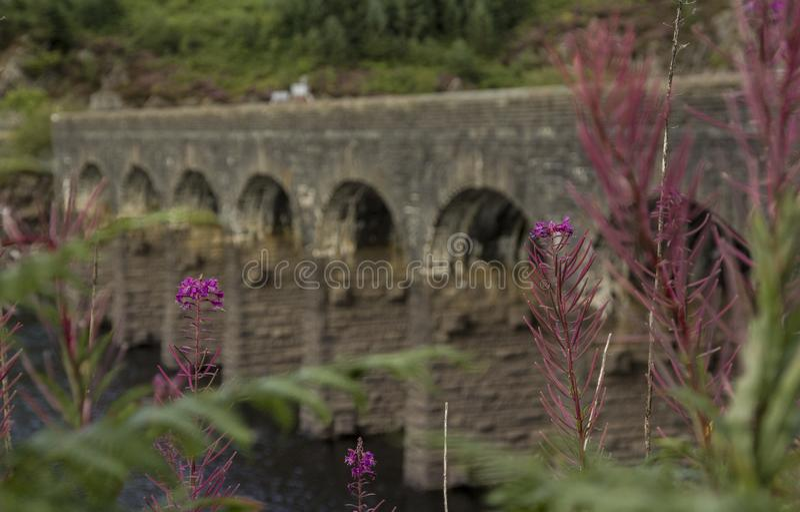 Overspannen brug over reservoir royalty-vrije stock foto