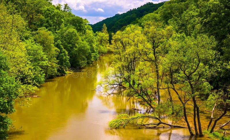 Overstromend bij Loch Raven Reservoir in Baltimore, Maryland royalty-vrije stock fotografie