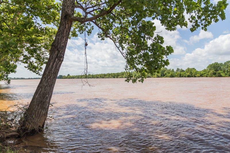 Overstroomde Rode Rivier in Shreveport en Bossier-Stad Louisiane stock fotografie