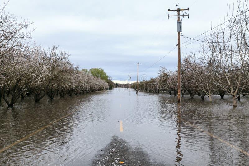 Overstroomde Weg dichtbij Chico, Californië stock afbeelding