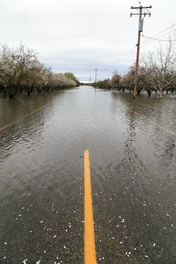 Overstroomde Weg dichtbij Chico, Californië royalty-vrije stock fotografie