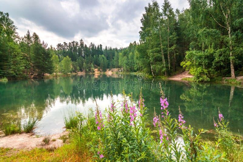 Overstroomde zandsteensteengroeve in het natuurreservaat Adrspach royalty-vrije stock afbeelding