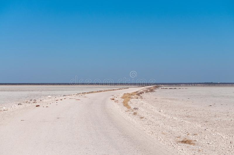 The Etosha Salt Pan. An overview of the empty space of the Etosha salt pan, Ethosha National Park, Namibia royalty free stock images