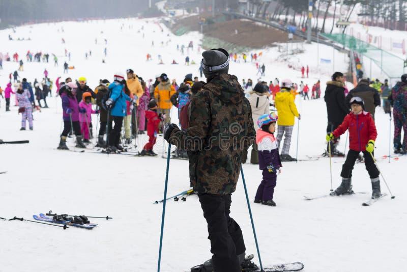 Overvol van toeristen geniet van de activiteiten in Jisan Forest Ski Resort royalty-vrije stock afbeeldingen