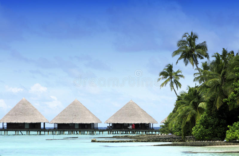 Overwater bungalow at Maldives. Tropical island in Maldives - forest and overwater bungalows royalty free stock photography