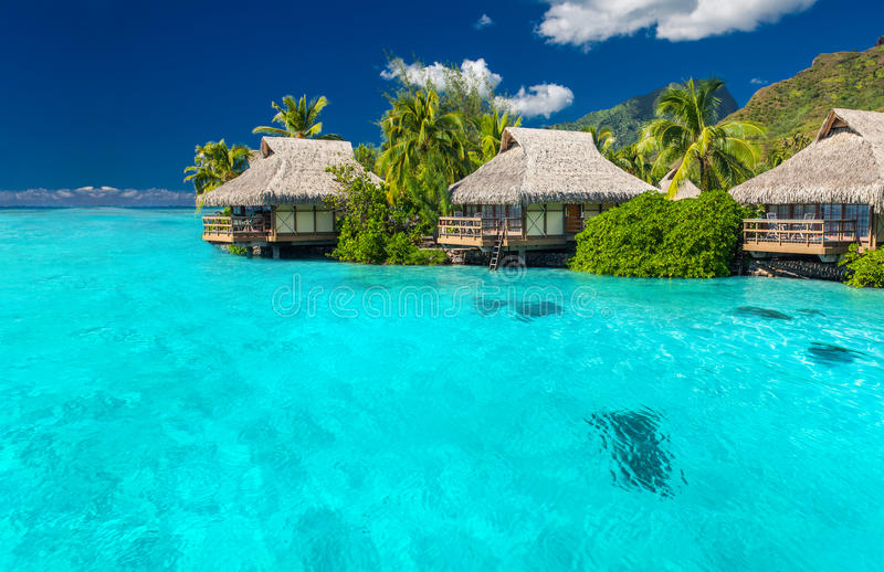 Overwater villas in lagoon of Moorea Island royalty free stock photography