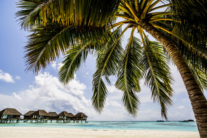 Download Overwater Villas In The Maldives Stock Image - Image of maldives, paradise: 75984343