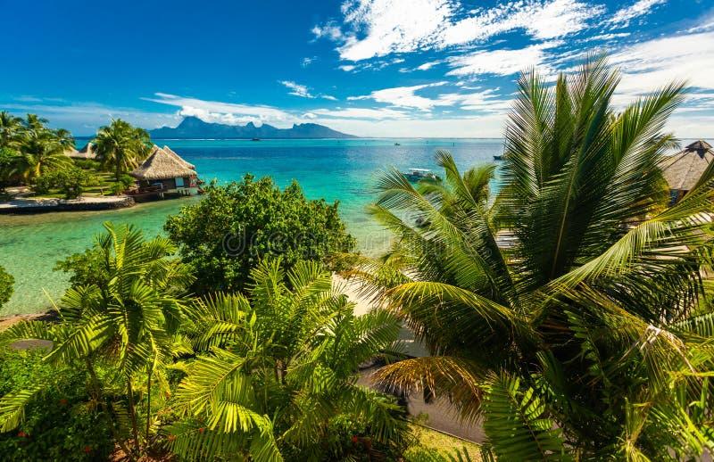 Overwaterbungalowwen met beste strand voor het snorkelen, Tahiti, Fren stock foto