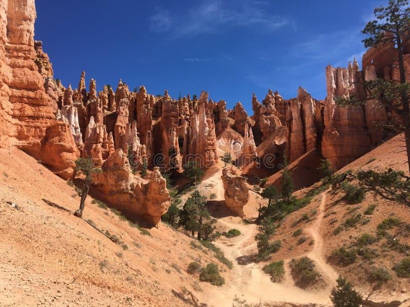 Overweldigend beeld van Bryce Canyon in de zomer royalty-vrije stock afbeelding
