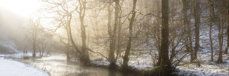 Overweldigend behandeld het plattelandsverstand van het de Winter panoramisch landschap sneeuw royalty-vrije stock foto