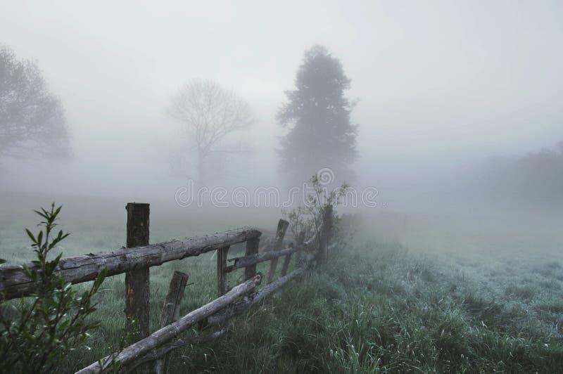 Overweldigend mistig landschap royalty-vrije stock fotografie
