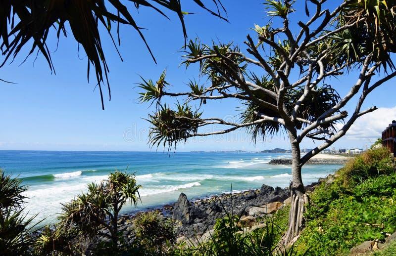 Overweldigende kustlijnoceaan, golven, branding, palmen, strandachtergrond stock afbeeldingen