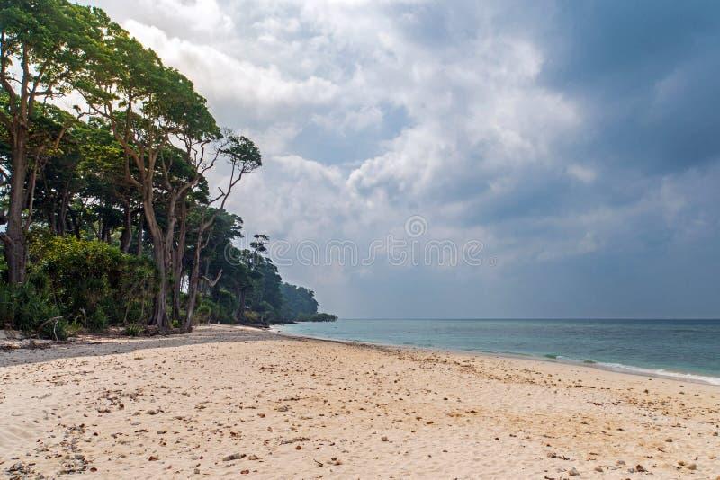 Overweldigende mening die van Jolly Buoy Beach, de mooie boom van A op het strand liggen royalty-vrije stock fotografie