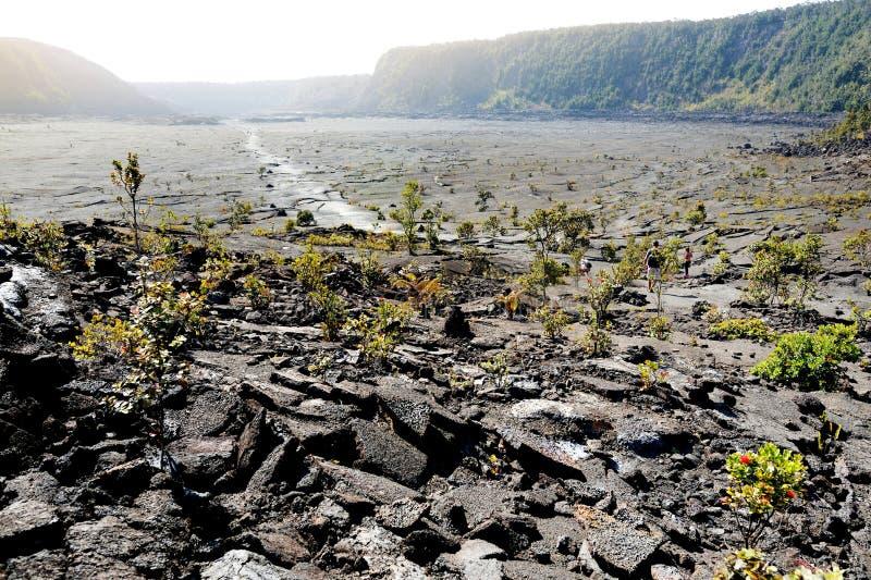 Overweldigende mening van de oppervlakte van de de vulkaankrater van Kilauea Iki met afbrokkelende lavarots in Vulkanen Nationaal stock foto's