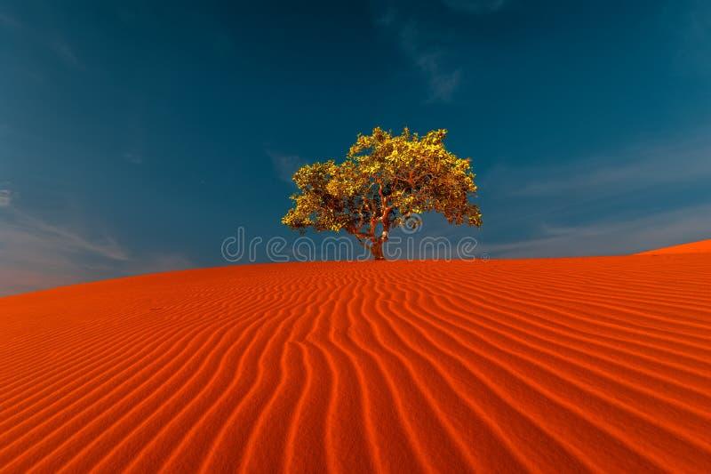 Overweldigende mening van eenzame zandduinen royalty-vrije stock afbeelding