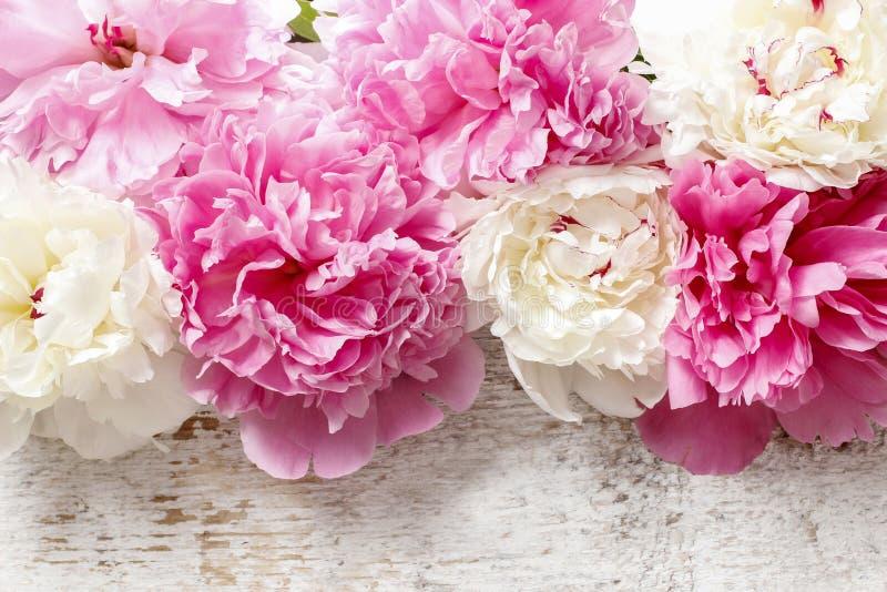 Overweldigende roze pioenen, gele anjers en rozen royalty-vrije stock afbeelding