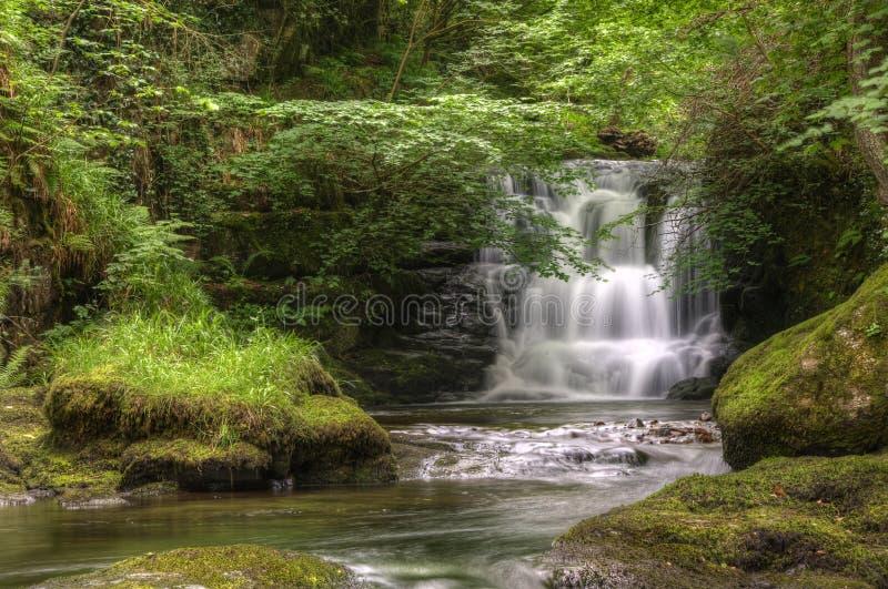 Overweldigende waterval die over rotsen in bos stroomt royalty-vrije stock foto