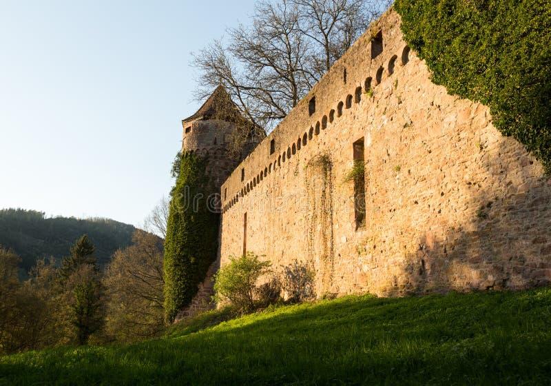 Overwelfde galerij en poort in oude kasteelmuur stock foto's
