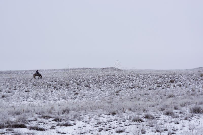 overwintering minimalism Zwart-wit grijze hemel Herder met een troep Nomadisch huishouden Kazachstan royalty-vrije stock foto's