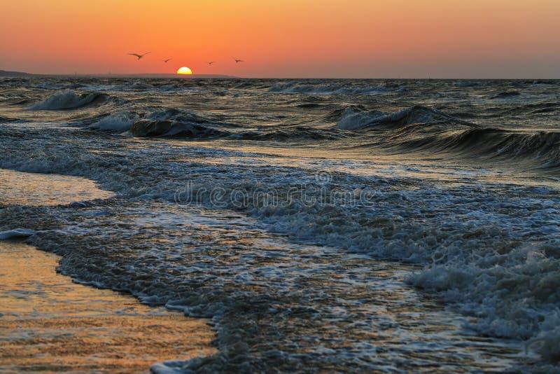 Overzees avondlandschap met een het plaatsen zon achter de horizon stock afbeelding