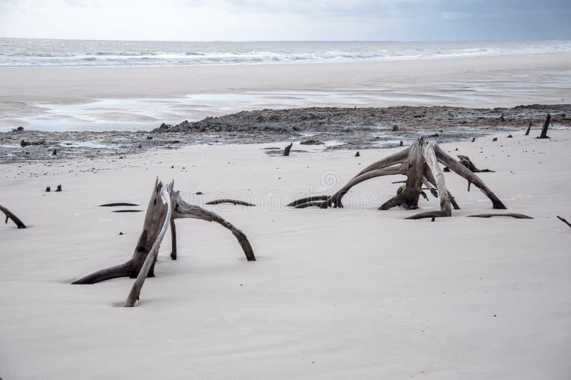 Overzees eilandstrand stock afbeeldingen