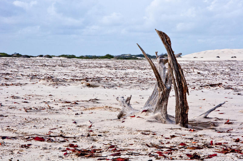 Overzees eilandstrand royalty-vrije stock fotografie