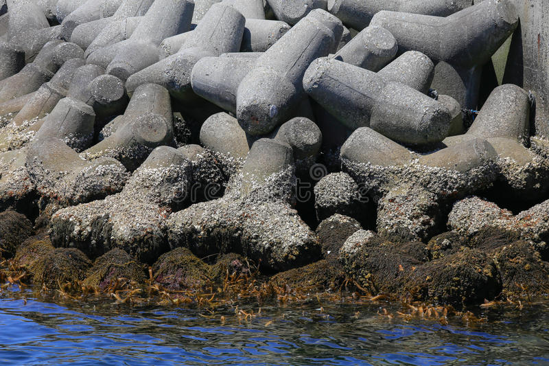 Overzees en kustbrekerbeton, Osaka, Japan royalty-vrije stock foto's