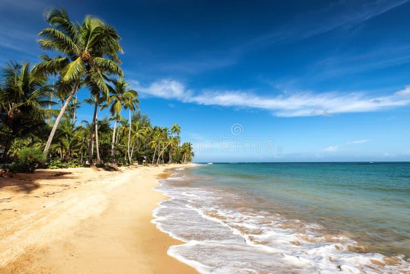 Overzees en zand stock fotografie