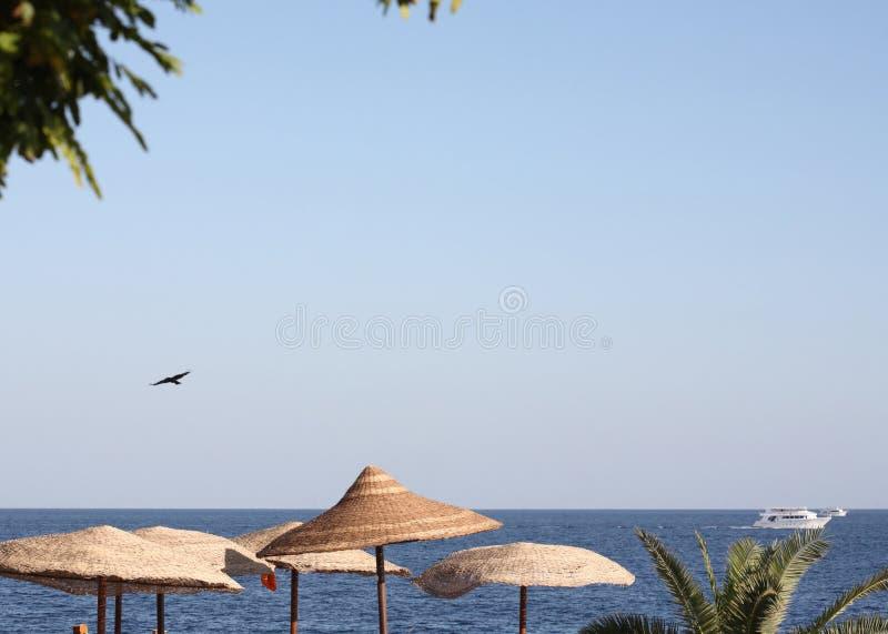 Overzees landschap, Egypte, Sharm el Sheikh stock foto's