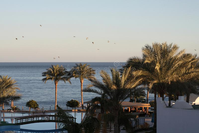 Overzees landschap, Egypte, Sharm el-Sheikh royalty-vrije stock foto's