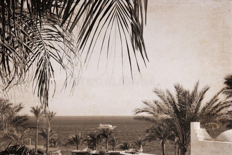 Overzees landschap, Egypte, Sharm el-Sheikh stock afbeeldingen