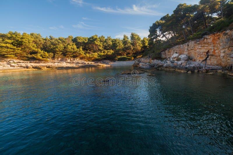 Overzees landschap met rotsen, klippen en bos op een zonnige de zomerdag Kroatië stock foto