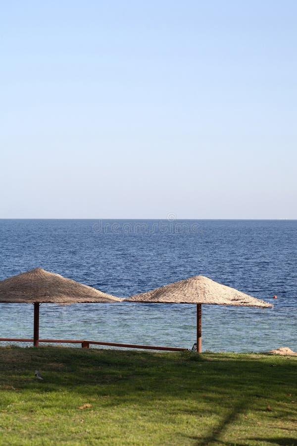 Overzees landschap, strandparaplu's, Egypte stock afbeeldingen