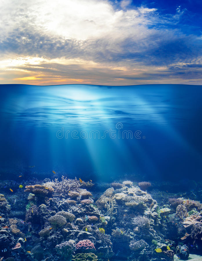 Overzees of oceaan onderwater met zonsonderganghemel stock fotografie